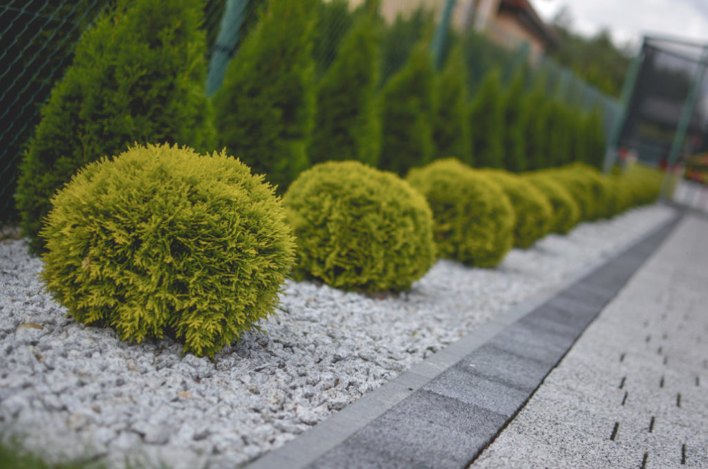 nowoczesne ogrody